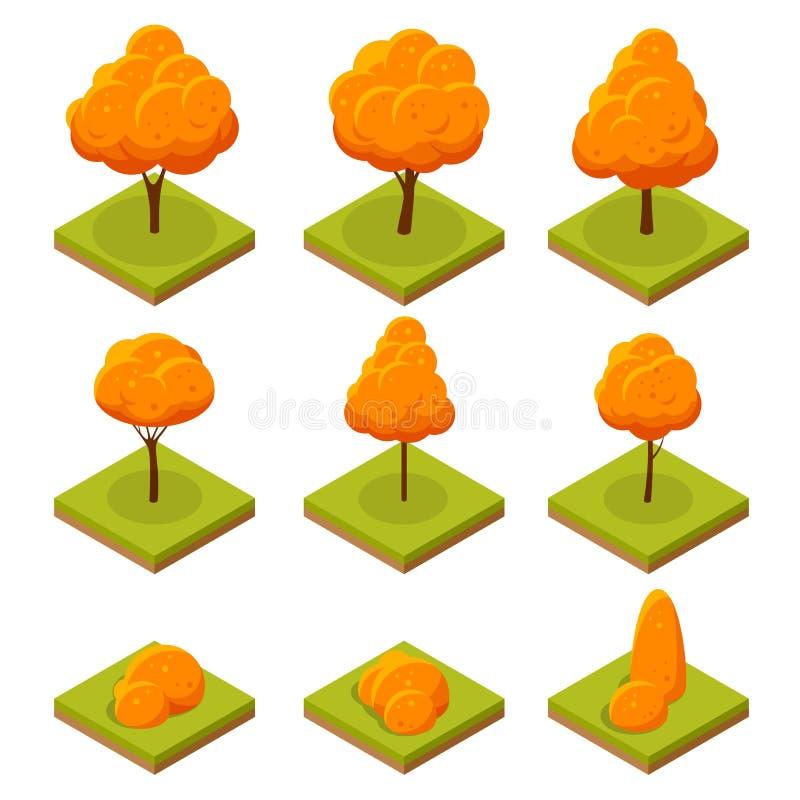 Isometric kolorowi jesieni drzewa ustawiający Żółty pomarańczowy spadku drzewo i jesienna ogrodowa płaska ilustracja Dla infograp ilustracji