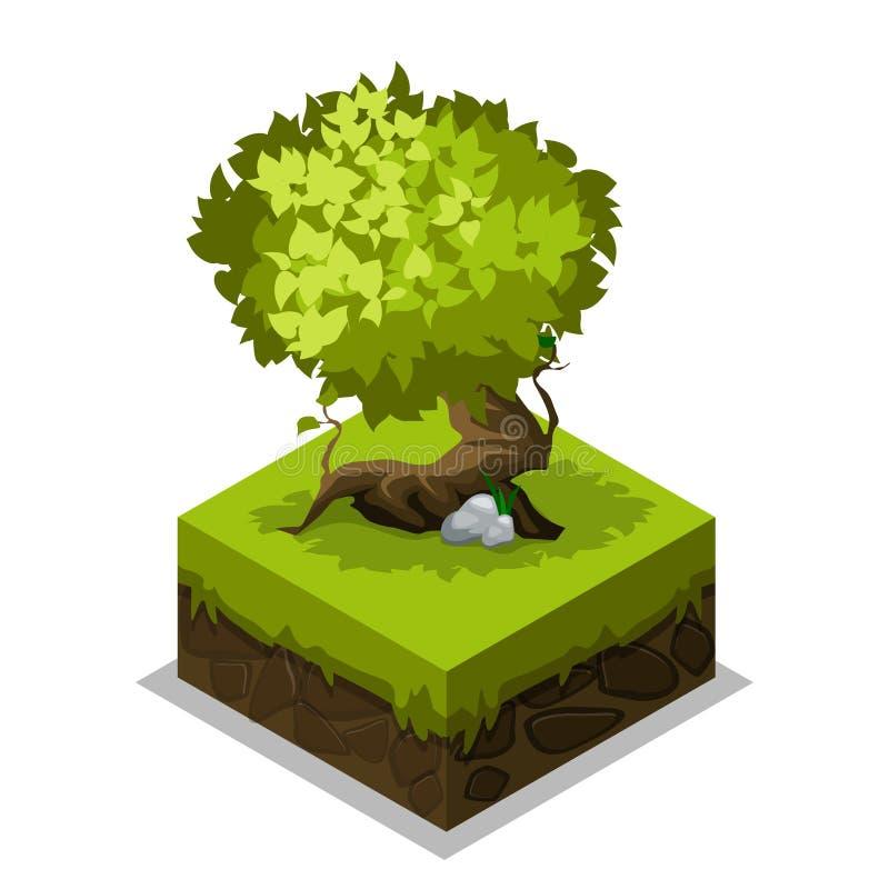 Isometric natury ziemia, trawa i drzewo, ilustracja wektor