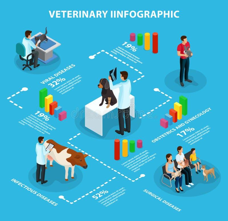 Isometrisch Veterinair Infographic-Concept stock illustratie