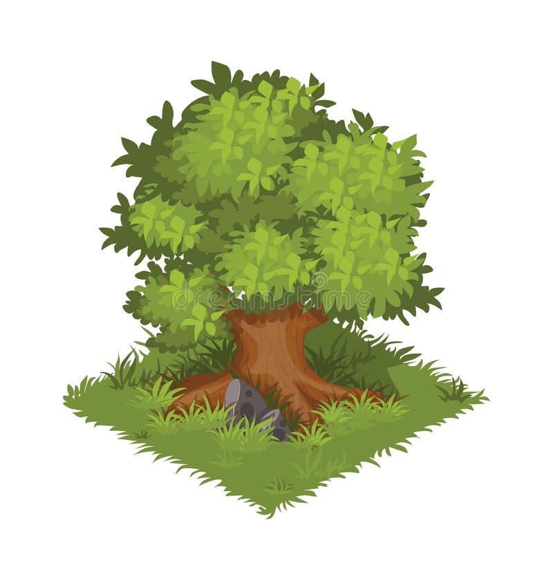 Isometrische Beeldverhaal Gigantische Eiken Boom, Groen en Dichtbegroeid - Element voor de Kaart of het Landschapsontwerp van Til stock illustratie