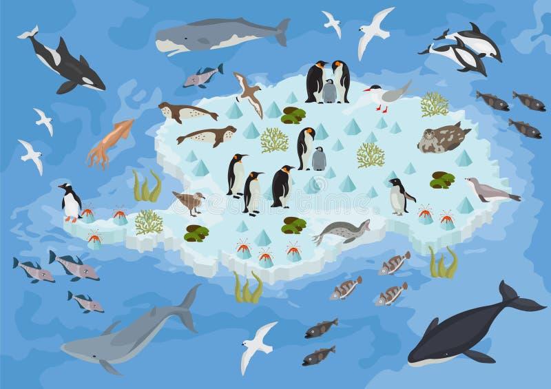 Isometrische 3d de flora en de faunakaartelementen van Antarctica Dieren, B royalty-vrije illustratie