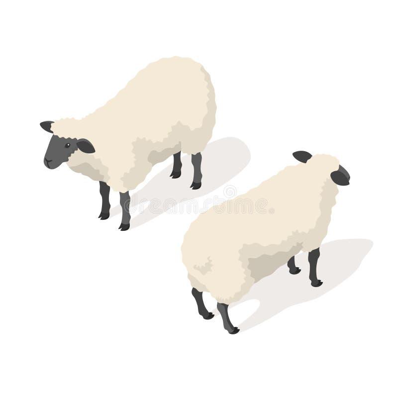 Isometrische Illustration des Vektors 3d von Schafen lizenzfreie abbildung