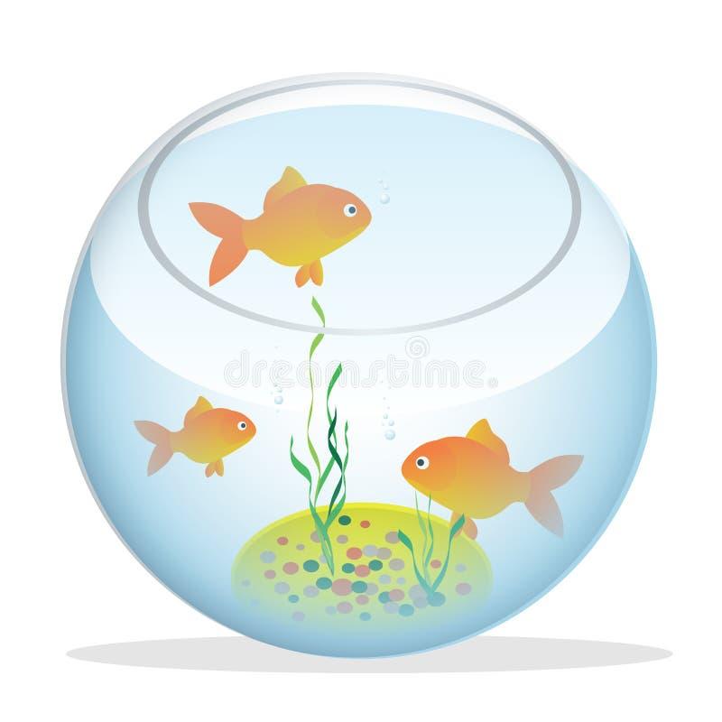 Isometrisches Aquarium mit Fischen, Algen und Dekorationen stock abbildung