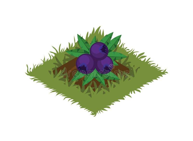 Isometrisk säng för tecknad filmfruktträdgård som planteras med Berry Bush - beståndsdelar för den Tileset översikten stock illustrationer