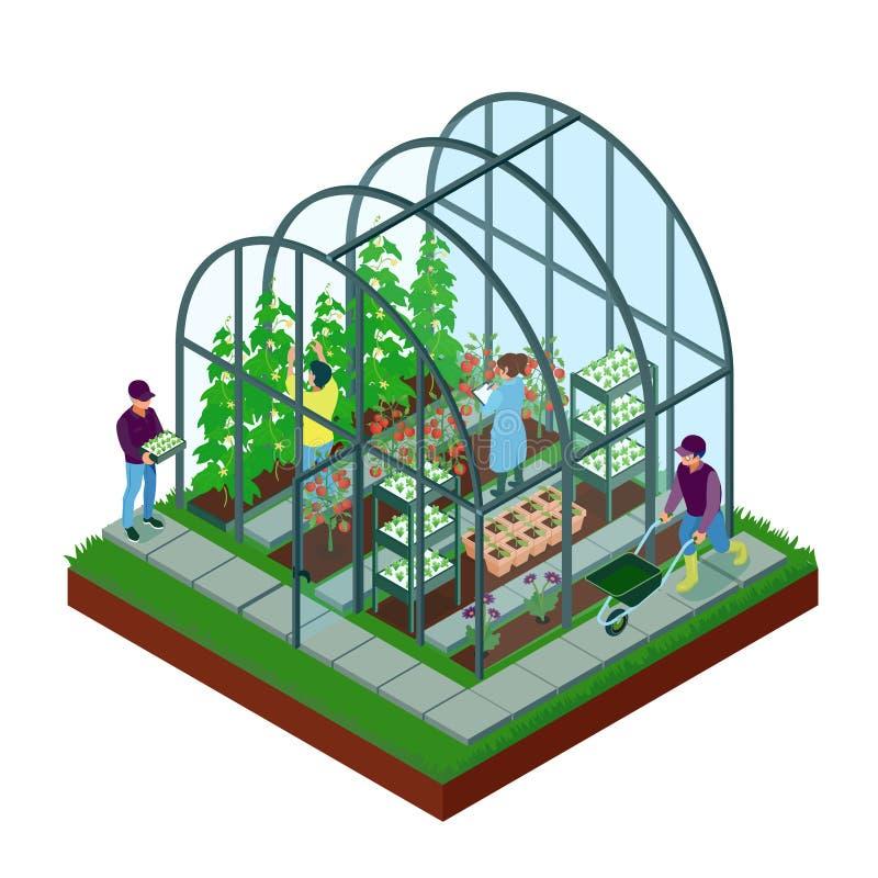 Isometrisk sammansättning för växthus vektor illustrationer