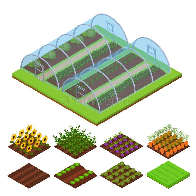 Isometrisk sikt för växthus vektor vektor illustrationer