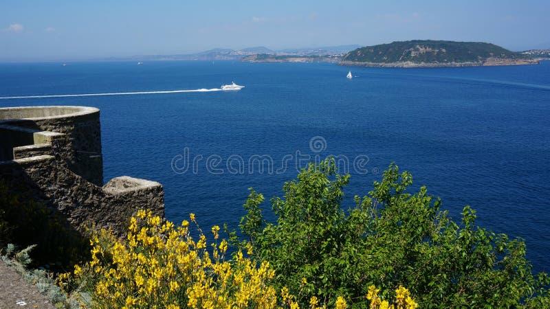 Download Isquiones Del Castillo De Aragonese Foto de archivo - Imagen de flores, acantilados: 42434452