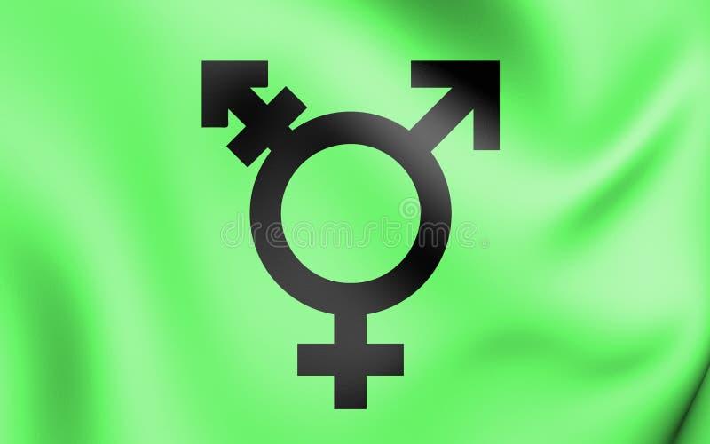 Israëlische transsexueelvlag vector illustratie
