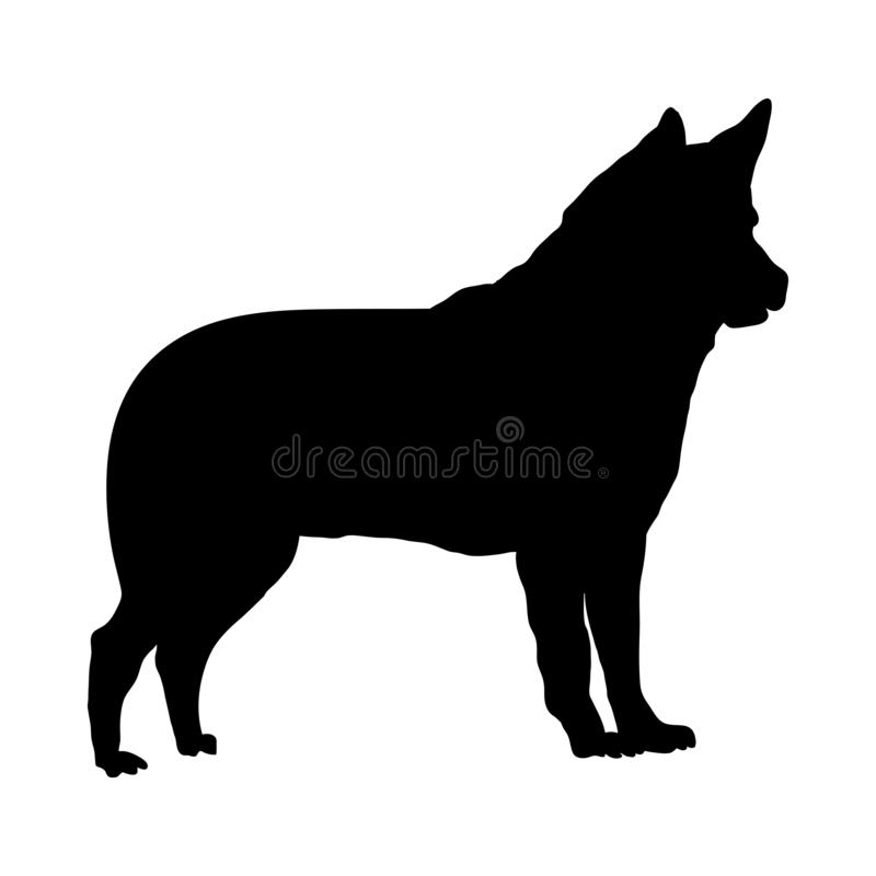 Free Israel Canaan Dog Silhouette Royalty Free Stock Photography - 147531547