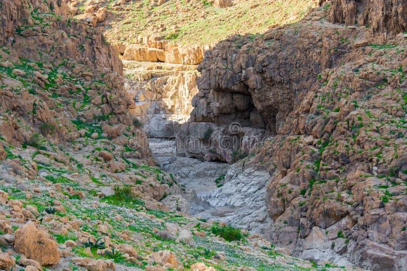 Israel desert. Qumran national park. stock photo