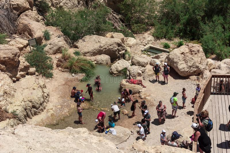 Israel, Ein-Gedi 11-05-2019 View of bathing people in the mountains of the Ein-Gedi national park, enjoying themselves in the natu stock photography