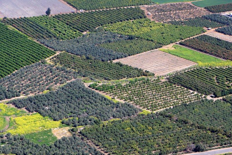 Israel fields stock photo
