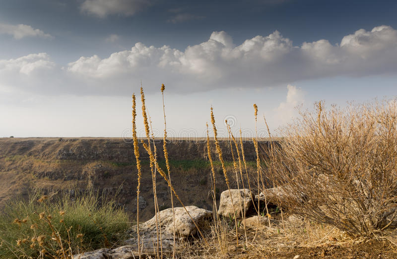Israel Gamla Nature Reserve. The Gamla nature reserve has a rare combination, both nature and scenery and a fascinating historical human story royalty free stock image