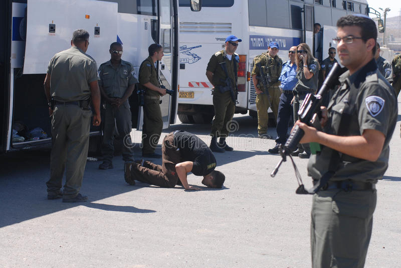Israel releases 255 Palestinian prisoners. RAMALLAH, PA - JULY 20:Palestinian prisoner kneels and kisses the ground on July 20, 2007.The release was a goodwill royalty free stock photo