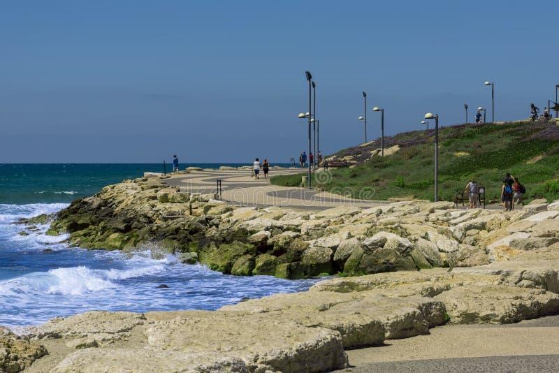 Israel Tel-Aviv May 19, 2019 una pista ciclabile di camminata e moderna scolpita e presentata nelle rocce attuali con i pali dell fotografia stock libera da diritti