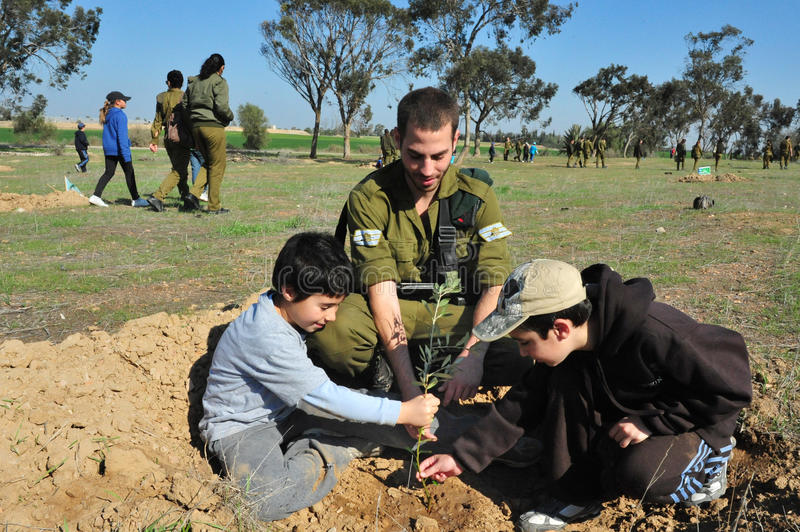 Israelis Celebrate The Jewish Holiday of Tu Bishvat. WESTERN NEGEV - JAN 20:Israeli soldiers and childrens plants trees in Tu Bishvat on January 20 2011 in the royalty free stock photo