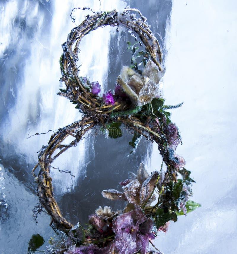 Isskulptur av blommor i ett djupfryst kvarter av is royaltyfria foton