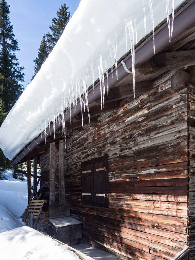 Isstalaktit som hänger från taket av ett trähus i bergen arkivfoton