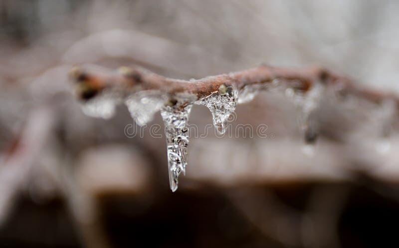 Isstorm i randen av våren arkivfoto