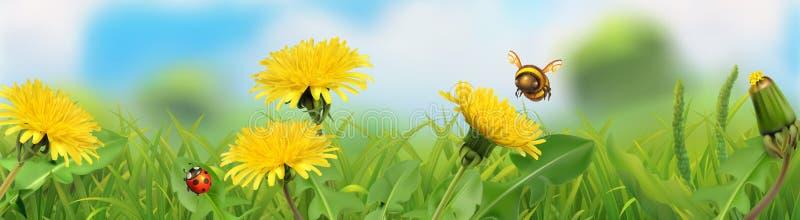 Ist ein gr?nes Feld voll der Weizenanlagen Gr?nes Gras und gelber L?wenzahn Panorama des Vektors 3d vektor abbildung