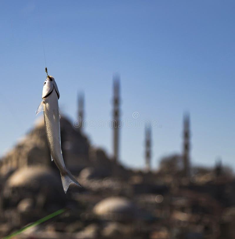 Istanboel Suleymaniye stock afbeelding