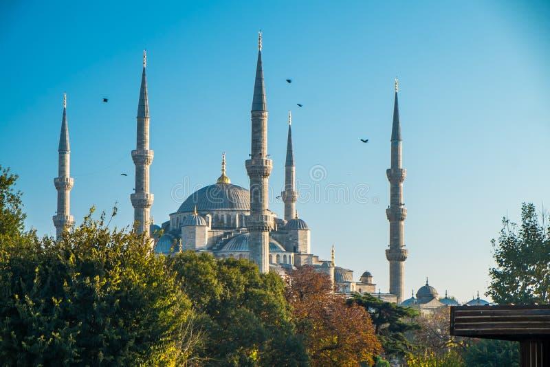 Istanbuł błękita meczet obraz stock