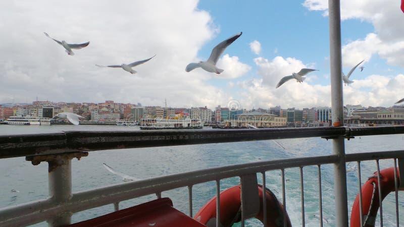 Istanbul Bosphorus photos libres de droits