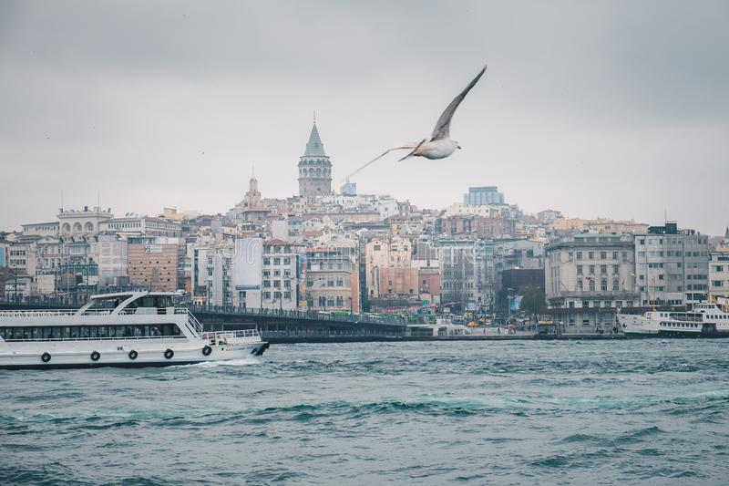 Istanbul cityscape and Bosporus panorama with seagull and boat royalty free stock images
