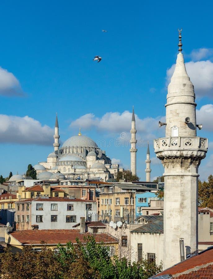Istanbul, die Türkei 09-November-2018 Vertikales Foto von Sulymaniye-Moschee gegen blauen Himmel und Vogelfliegen lizenzfreie stockfotos