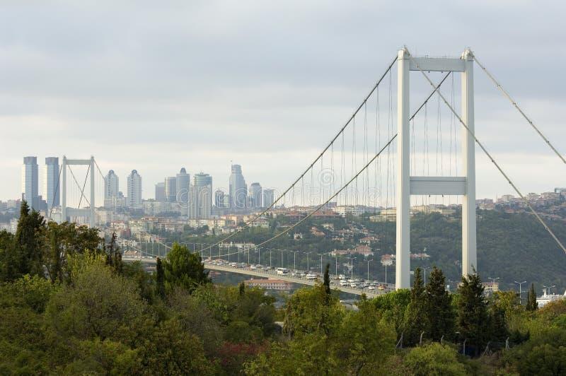 istanbul kalkon fotografering för bildbyråer