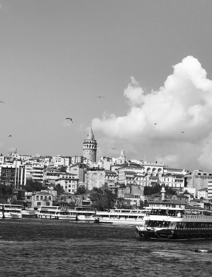 Istanbul noir et blanc image libre de droits