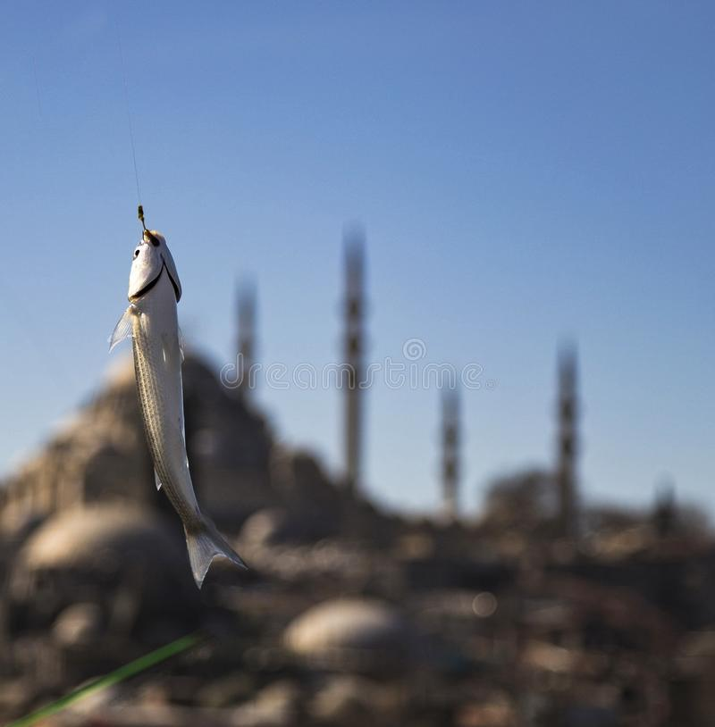 Istanbul Suleymaniye stockbild