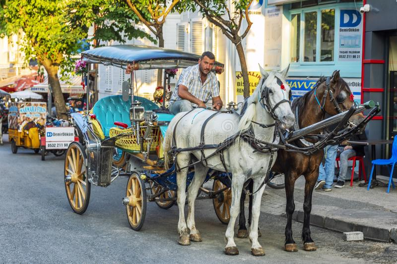 Istanbul, Turkey, 05/24/2019: A cart with horses on Princes Island. Horizontal stock images