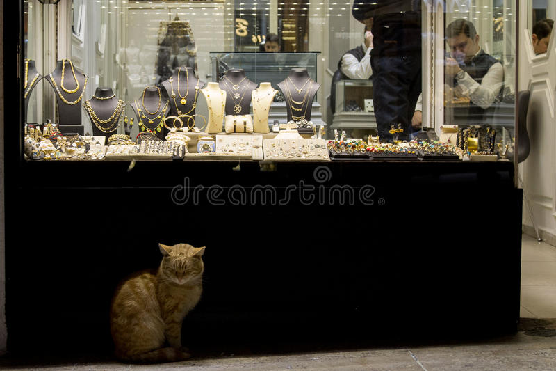 Download ISTANBUL, TURKEY - DECEMBER 28, 2015: Ginger Cat In Front Of A Jewelry Store In The Grand Bazaar Editorial Photography - Image: 86623057