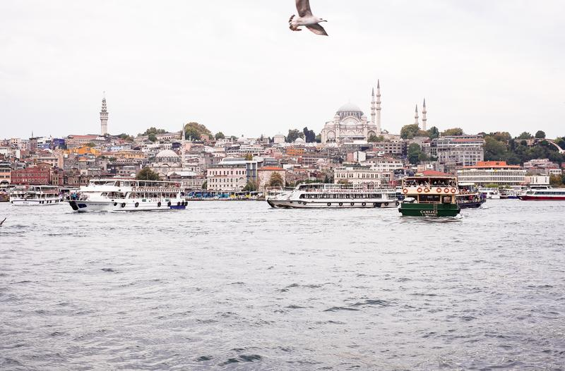 Istanbul / Turkey - September 26, 2014: View from the Golden Horn on the historical center of Istanbul. View of the Sleymaniye Mos royalty free stock images