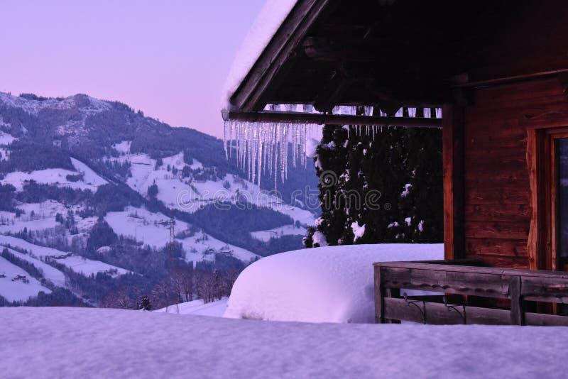 Istappar hänger av alpint skidar logen royaltyfri foto