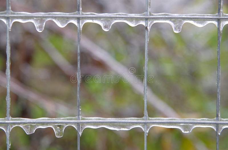 Istappar på ett fyrkantigt raster royaltyfria foton