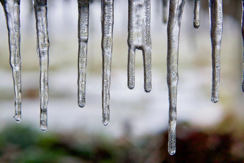 Istappar som bildas efter frysa regn som är detaljerat arkivbilder