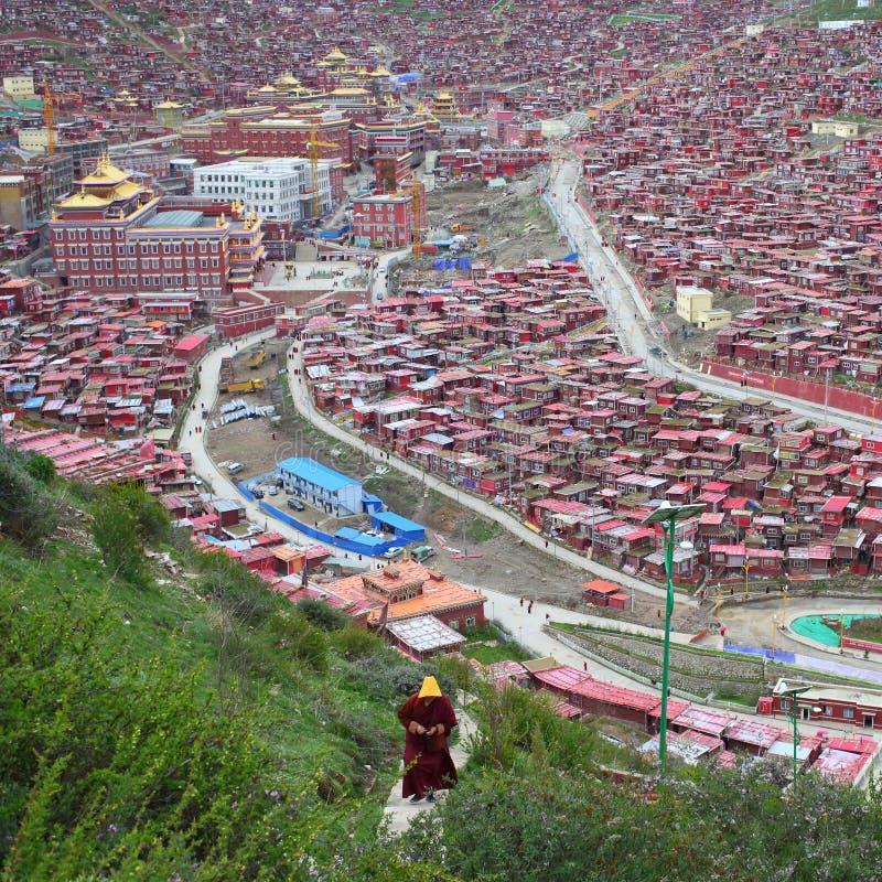 Istituto universitario della Cina Sichuan Seda Larong Buddha fotografia stock