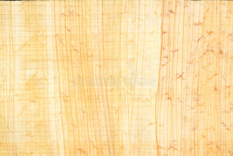 Istny Egipski papirusu papieru tło 21 i tekstura, zakończenie w górę makro- obraz royalty free