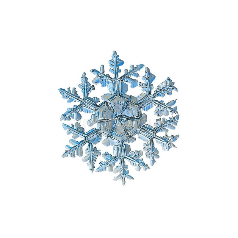 Istny płatek śniegu odizolowywający na białym tle fotografia royalty free