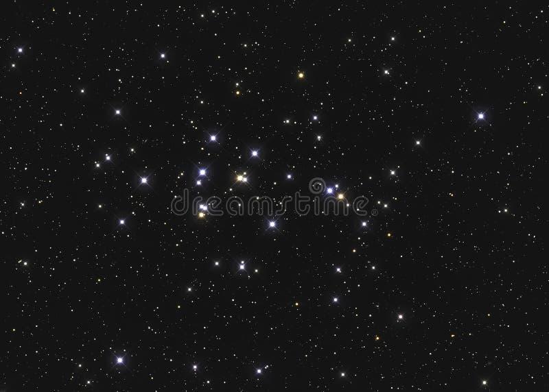 Istny wielki gwiazdowy grono M44 2632 lub NGC Ulowy grono w gwiazdozbioru nowotworze w Północnym niebie brać z CCD kamerą i obrazy stock