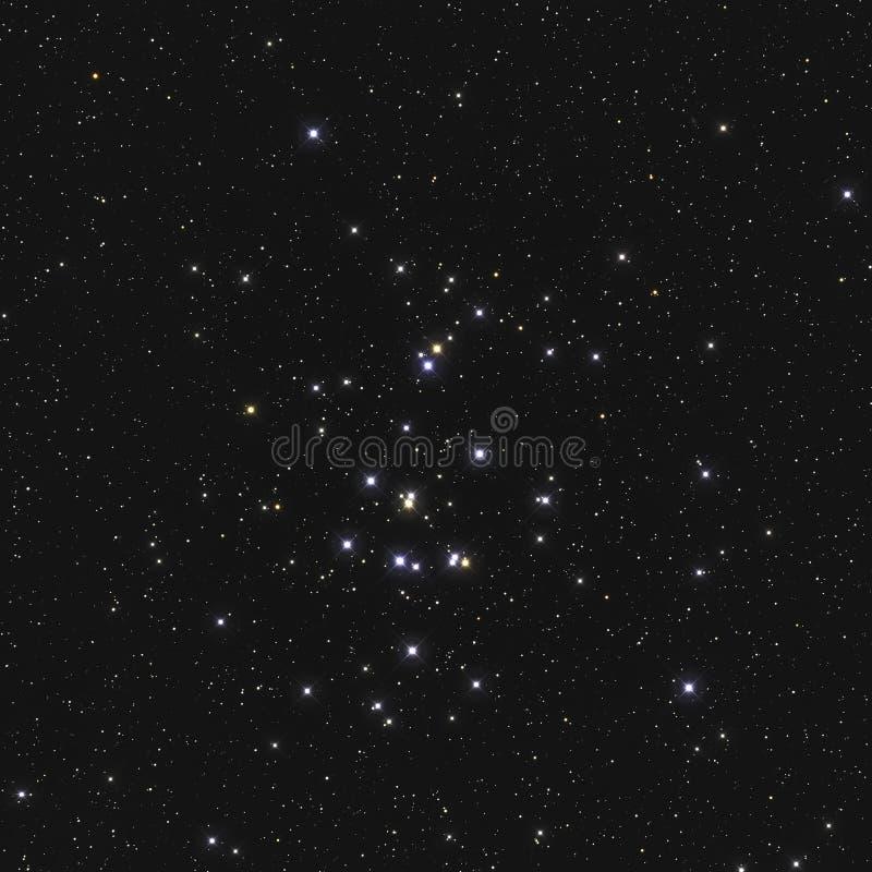 Istny wielki gwiazdowy grono M44 2632 lub NGC Ulowy grono w gwiazdozbioru nowotworze w Północnym niebie brać z CCD kamerą i obraz royalty free
