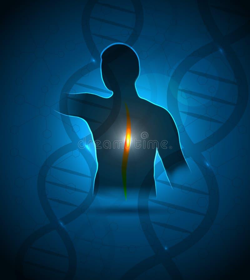Istota ludzka i DNA ilustracja wektor