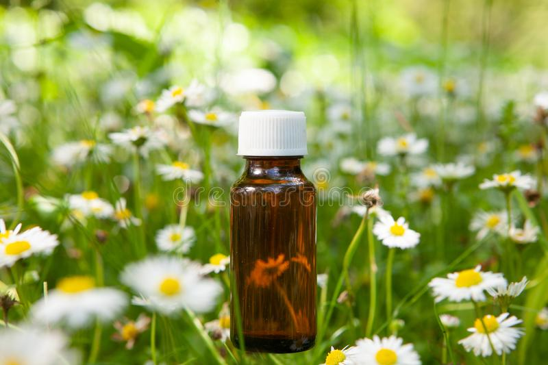 Istotni ziele, oleju i rumianku kwiaty, zdjęcie stock