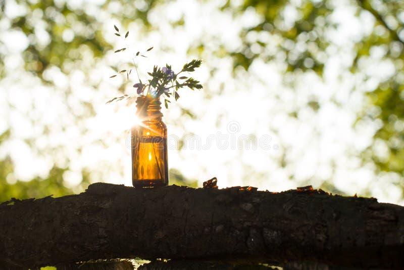 Istotny aromata olej na zielonym tle Selekcyjna ostrość, horizonta obraz royalty free