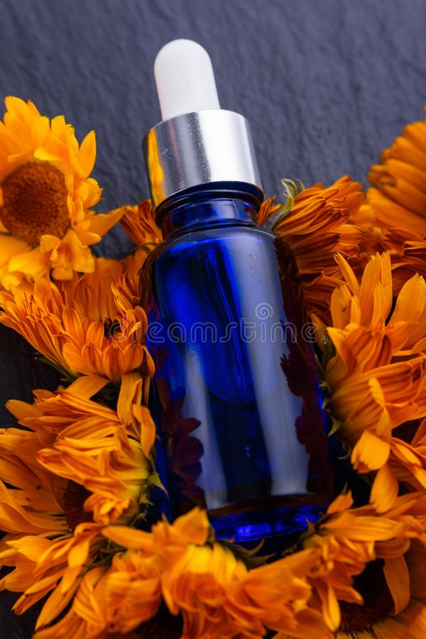 Istotny olej calendula na ciemnym kamiennym tle fotografia stock
