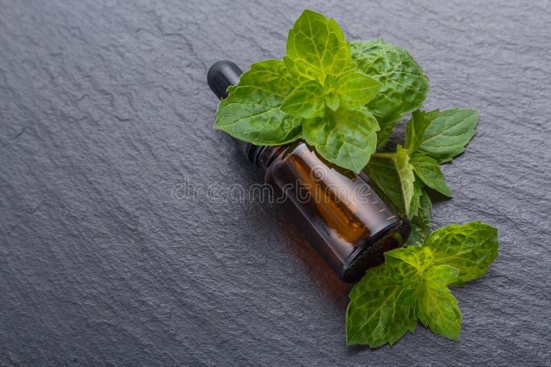 Istotny olej miętówka na ciemnym kamiennym tle fotografia stock