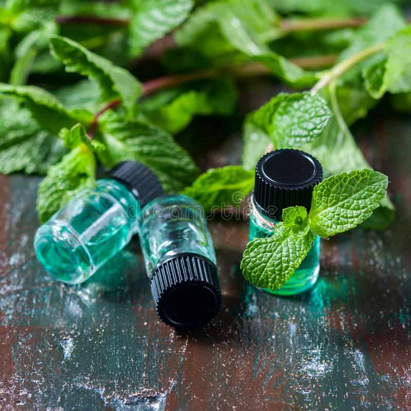 Istotny olej miętówka w małych butelkach, świeża zieleni mennica na drewnianym tle zdjęcia royalty free