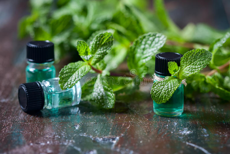Istotny olej miętówka w małych butelkach, świeża zieleni mennica na drewnianym tle fotografia stock
